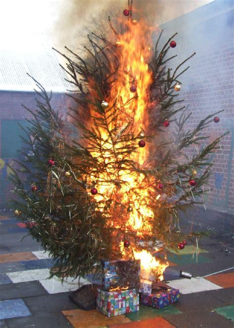 bauers weihnachtsbaum brandschutz unterm erleuchteten weihnachtsbaum deutscher feuerwehrverband gibt tipps vorsorge