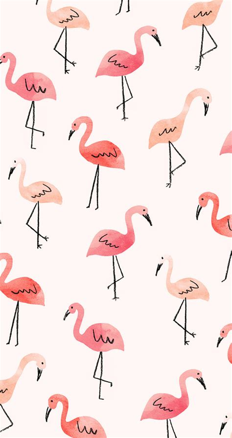 Flamingo Wallpaper Iphone 5 | inspired idea new tech august wallpapers lauren conrad