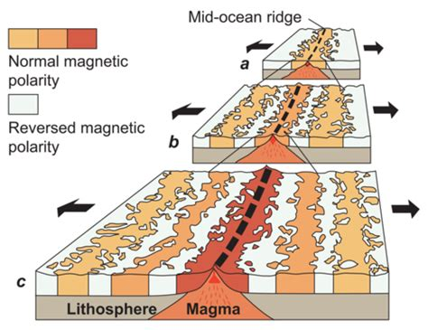 pattern of magnetic polarity reversal magnetic evidence for seafloor spreading ck 12 foundation