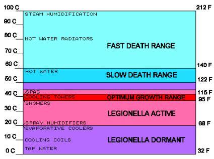 pontiac fever symptoms legionnaires disease terra marra international