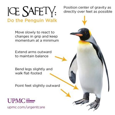 walking tips walking in a winter take some tips from an expert walk like a penguin