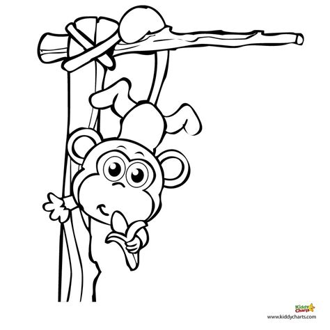 three little monkeys coloring page monkey coloring pages a monkey for your monkey monkey