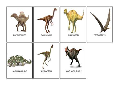 animales herbívoros imagenes recursos d un mestre d infantil proyecto de los
