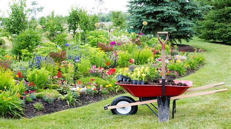 piante da mettere in giardino 10 piante da giardino come scegliere quelle giuste