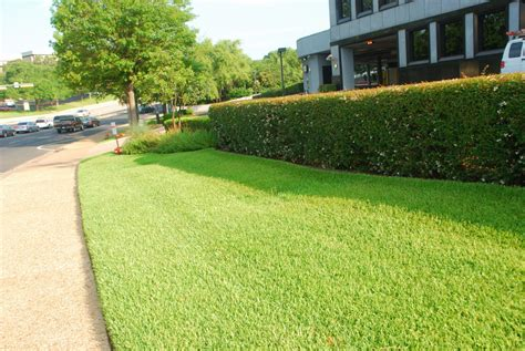 commercial landscape maintenance landscapes usa