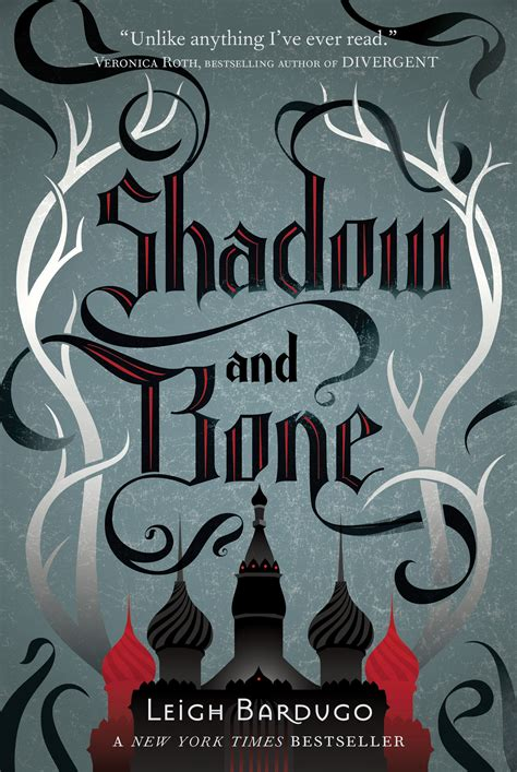 the shadow of the books books aplenty books galore abbreviated review shadow
