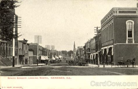 state looking geneseo il