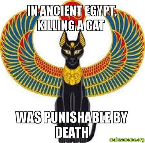 Egyptian Memes - ancient egyptian cat memes