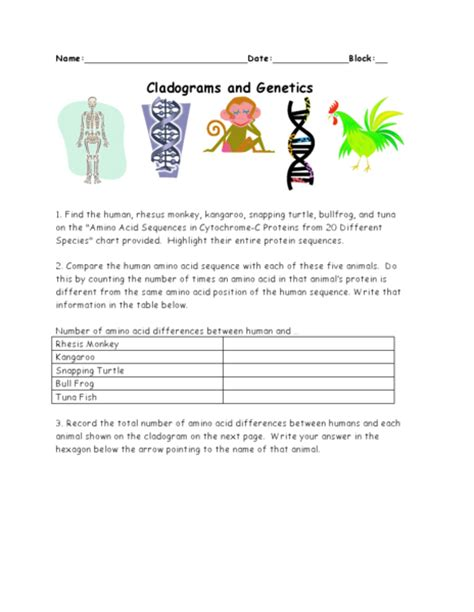 Cladogram Worksheet Answers by Cladograms And Genetics Worksheet Answers Myideasbedroom