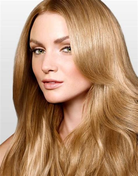 medium golden hair color light golden brown hair color