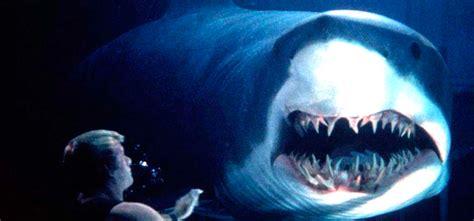 submarino el tiburn asesino las 13 mejores pel 237 culas de tiburones asesinos terror en