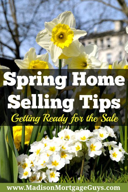 get your home ready for spring getting your home ready for a spring sale real estate