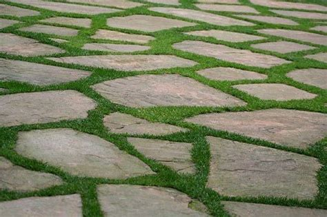 Flagstone Patio Pavers Flagstone And Grass Flagstone Patio Path Awesome Backyards And Perennials