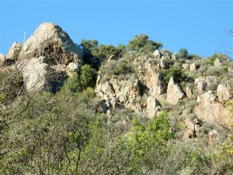 Landscape Rock San Jose Ca Bird Picture Of Alum Rock Park San Jose Tripadvisor