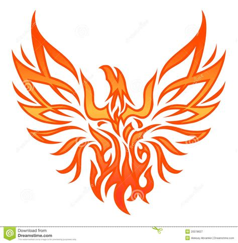 fire eagle tattoo royalty free stock photography image