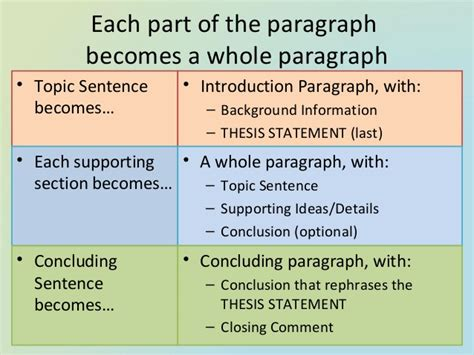 paragraph section essay structure introduction