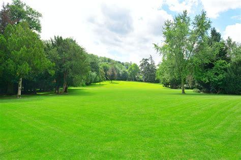Paysage De Jardin by Paysage Jardin Eolienne Deco Jardin Horenove
