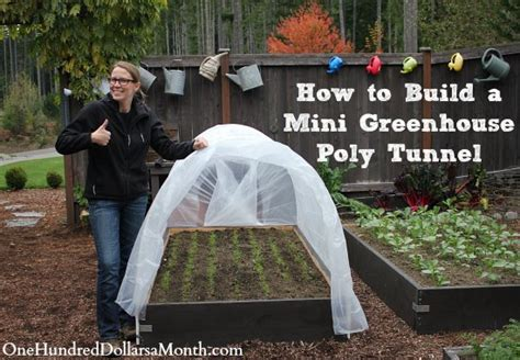 what do i need to build a house how to build a small poly tunnel one hundred dollars a month