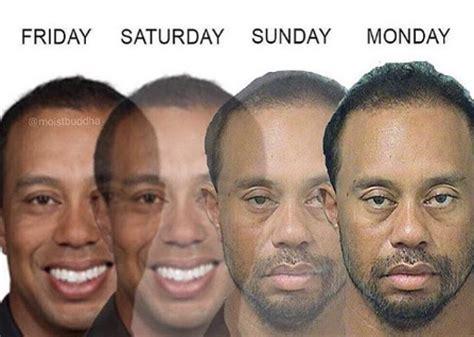 Tiger Woods Meme - tiger woods memes dui top 10 funniest