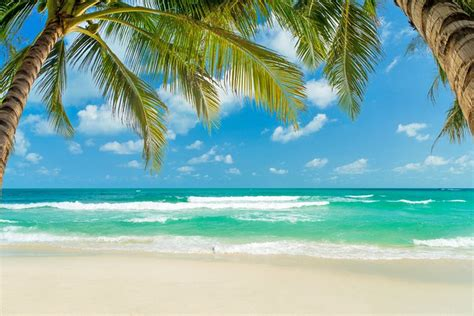 stay  koh samui  areas hotels planetware