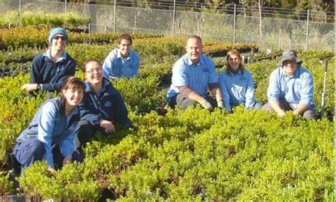 Welby Gardens by Welby Garden Centre Guide To Shoalhaven And Southern