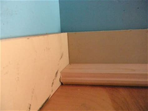 Laminate Flooring: Laminate Flooring Expansion Gap Filler