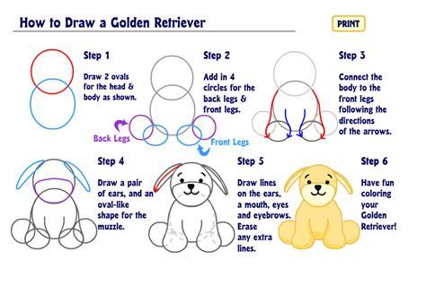 how to a golden retriever how to draw a golden retriever wkn webkinz newz