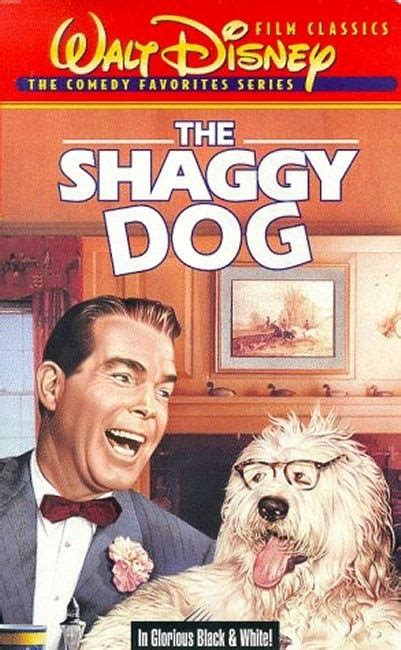 the shaggy 1959 the shaggy i am never to for disney