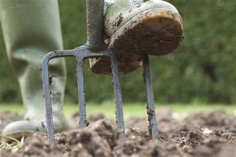 How To Prepare Soil For A Garden   2 Different Ways