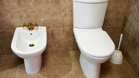 Bidet Origin learning the lingo bidets floating vanities and other