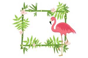 exotic tropical frame illustrations creative market
