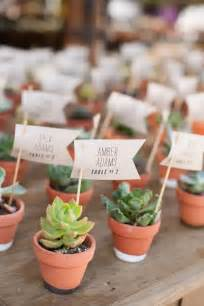 Succulents As Wedding Favors by Best 25 Succulent Wedding Favors Ideas On