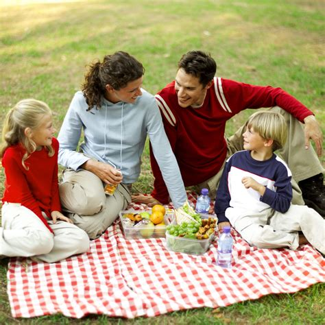 Picnic Family by Summer Family Activity A Picnic Drive The Nation
