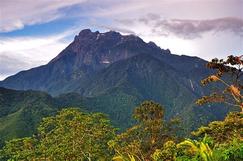 Climbing Mt Kinabalu, Borneo?s biological treasure trove