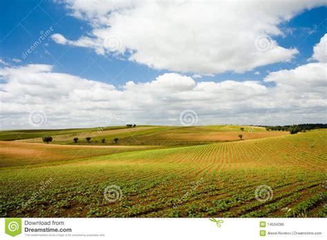 Free Landscape Design App Plains Of Alentejo Portugal Royalty Free Stock Image
