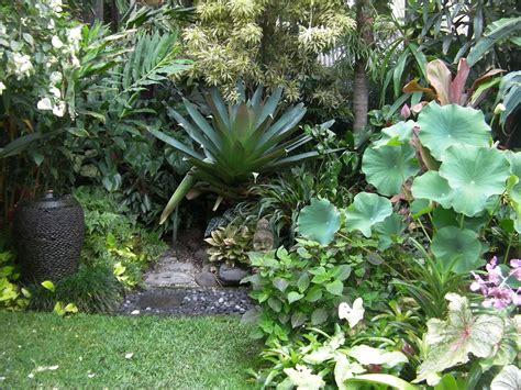 tropical gardening ideas tropical landscape gardening ideas 21 wonderful tropical