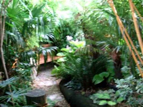 Dannis Sarimbit D Sun Flower burke s backyard dennis hundscheidt s garden