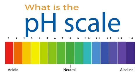 ph scale colors what is the ph scale