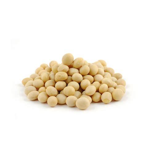 Soya Bean 1 organic soy bean seeds from 1 2kg to 5kg ebay