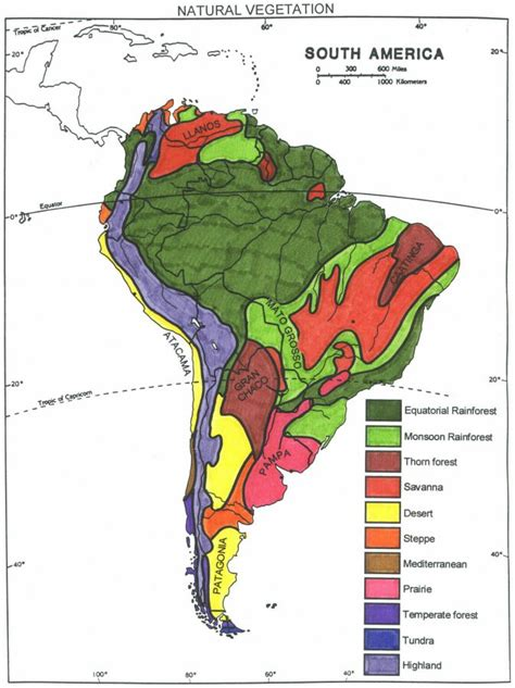 vegetation map of america south american vegetation america