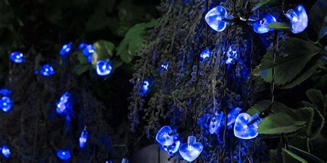 blue solar lights blue solar lights solar lights