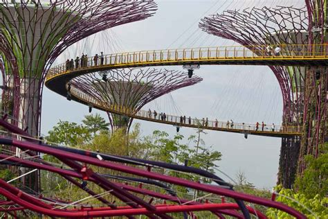 gardens by the bay singapore supertrees e architect