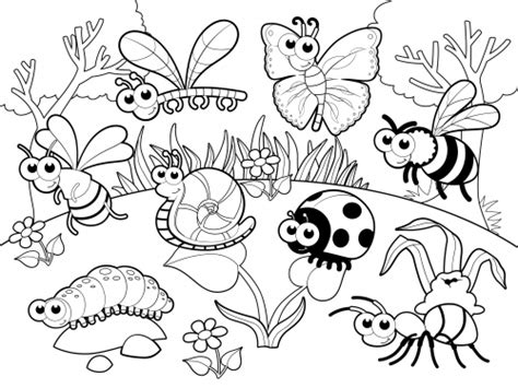 garden insects coloring page garden bug coloring pages