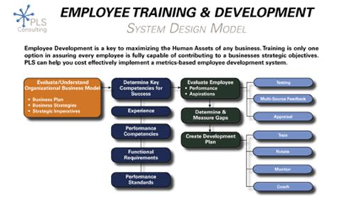 design management training program employee development systems talent management pls