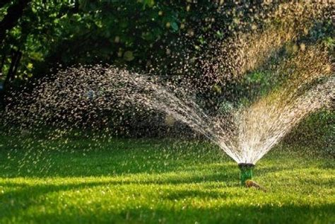 irrigazione per giardino irrigazione giardino idee green
