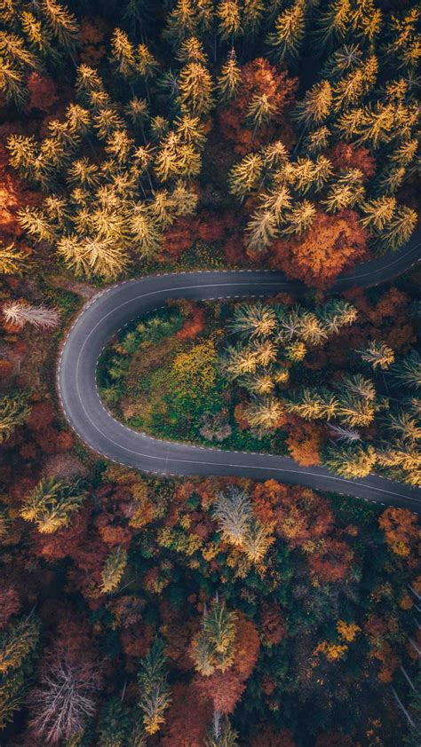 road autumn forest aerial view iphone wallpaper iphone