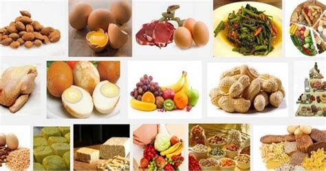 Protein Tinggi 36 Makanan Yang Mengandung Sumber Protein Tinggi