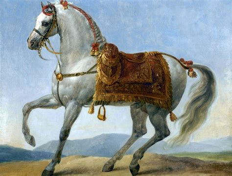 war breeds top 10 most war horses in the history strongestinworld