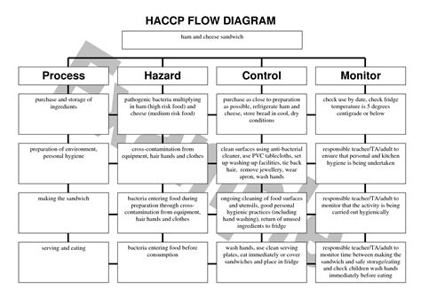 haccp plan template 4 best images of haccp flow chart template printable