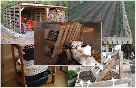 diy homestead projects 20 diy pallet projects for your homestead home and gardening ideas